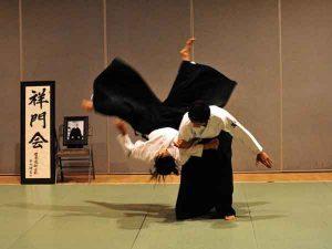 Tìm hiểu các đòn Aikido cơ bản và các thế võ khi phòng ngự
